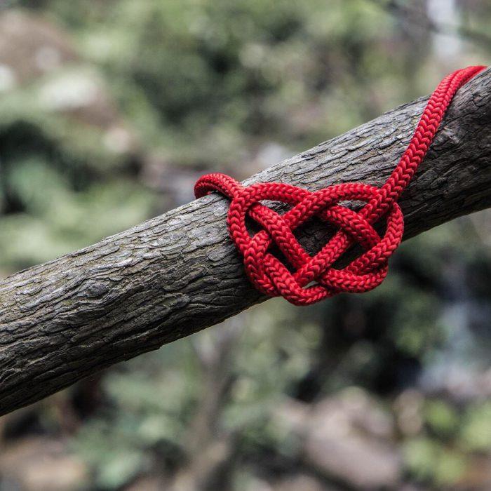 doğa ile barışık olma, ağaç, kalp, kırmızı