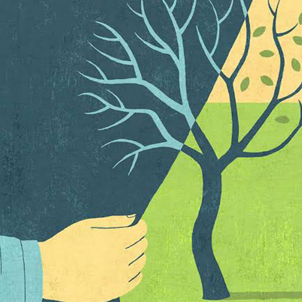 ağaç, kuru, yaş, yaprak