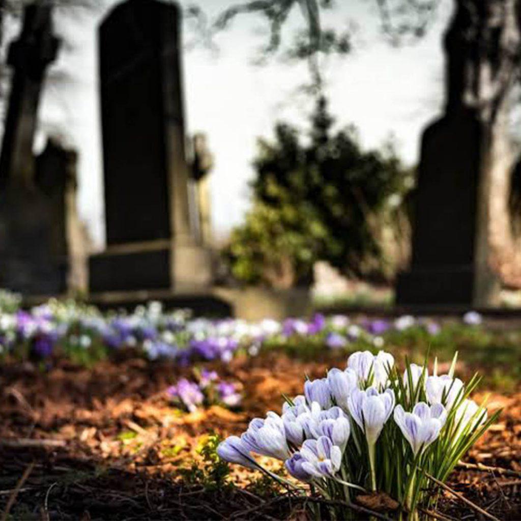 mezar,çicek,ölüm