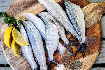 balık, hamsi, su ürünleri