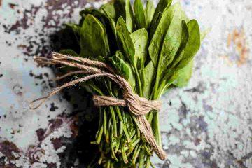 ıspanak, yeşillik, spinach