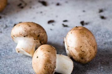 Mantar, mushroom, mantar yemekleri, mantarlı