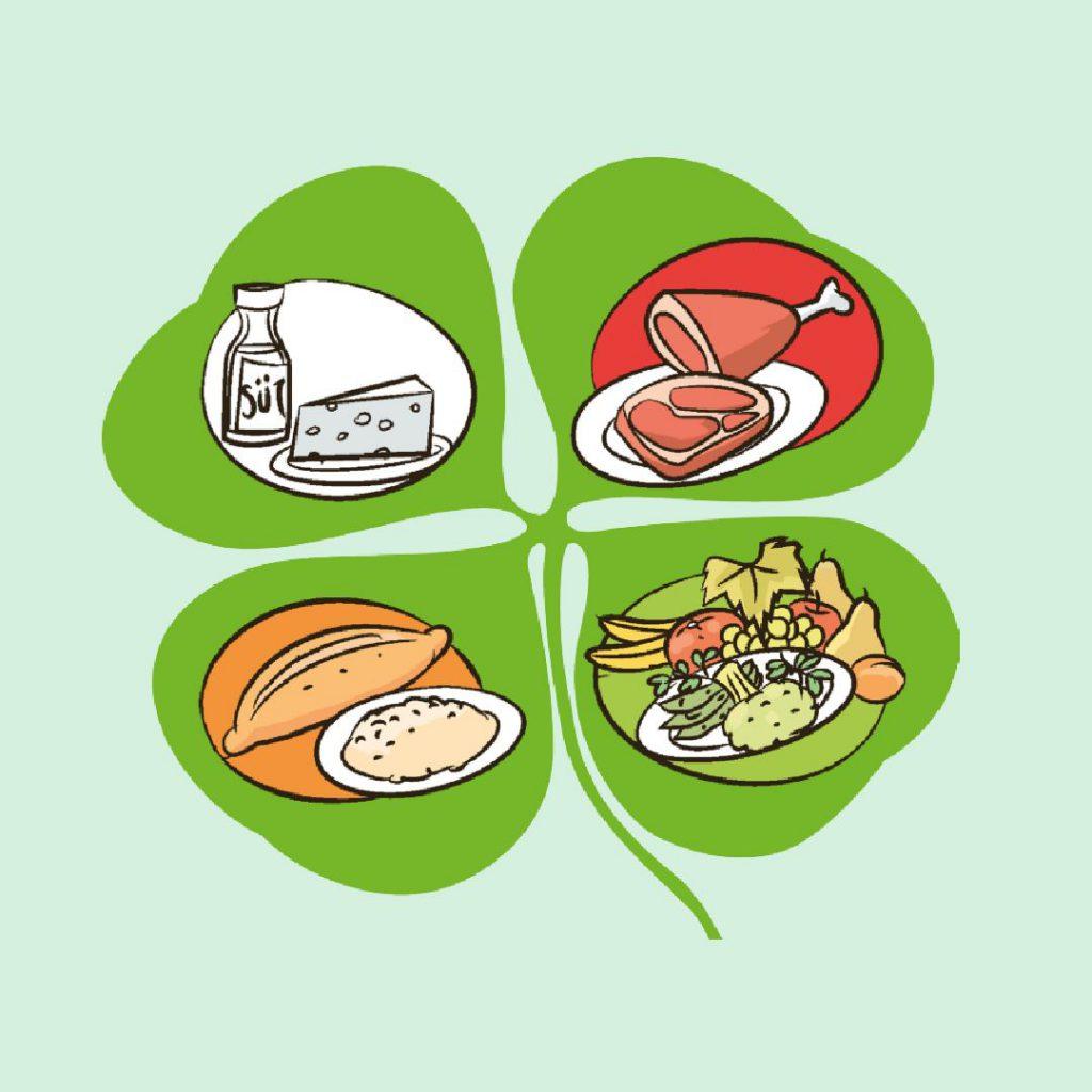 Sağlıklı beslenmede 4 yapraklı yonca modeli