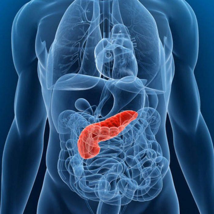 pankreas organı, pankreaz salgı bezi