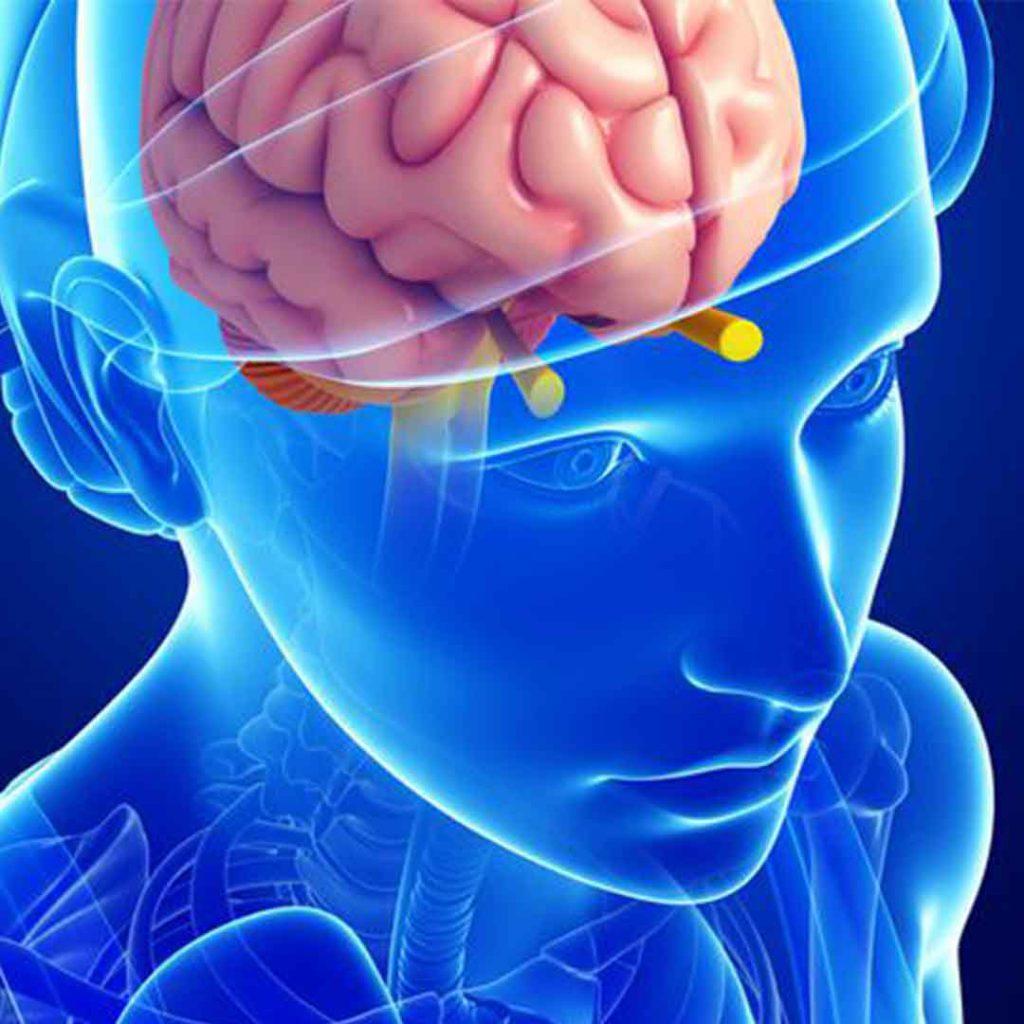 beyin, ilaç, psikoloji, psikiyatri, antidepresan