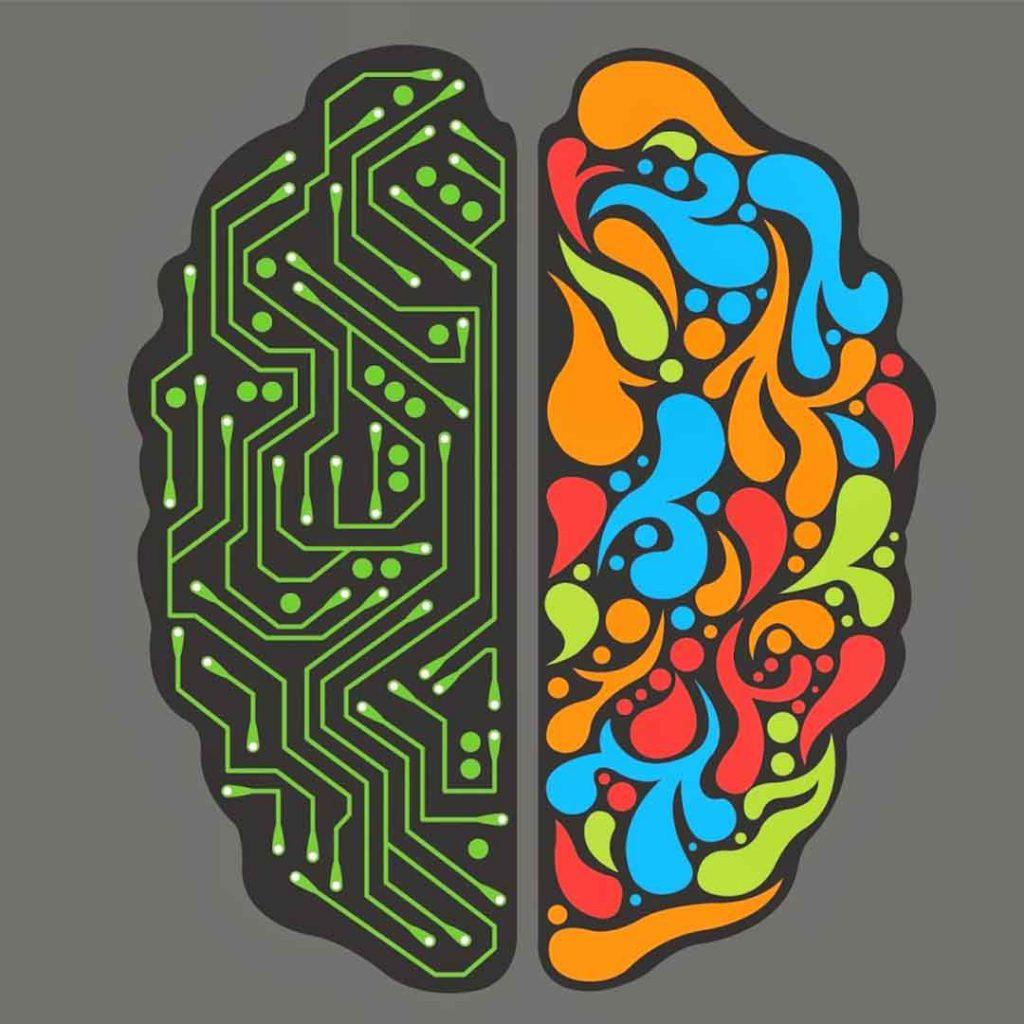 beyin, sağ beyin, sol beyin, mantıklı, duygusal, dijital