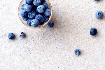 bilberry, billberry, blue berry, blueberry, yabanmersini, yaban mersini