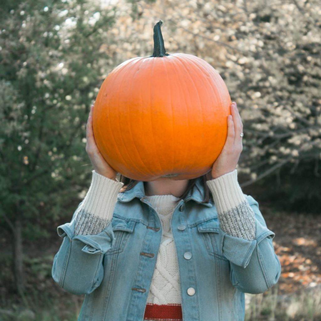 bal kabağı balkabağı pumpkin, kabak