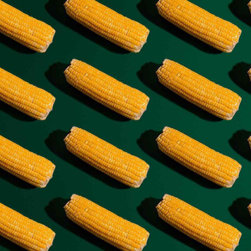 mısır, corn, sarı, ekmek yerine geçen