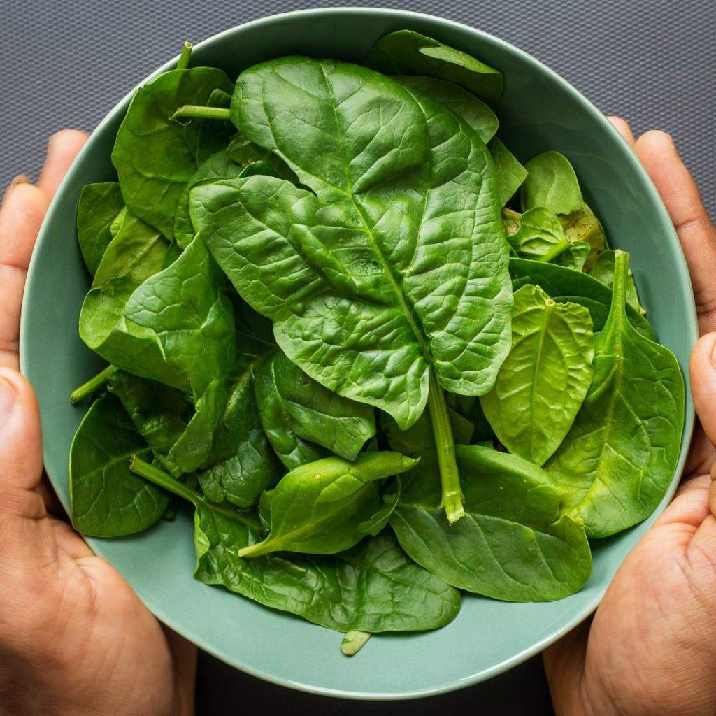 ıspanak, yeşillik, yeşil yapraklı sebze, sninach