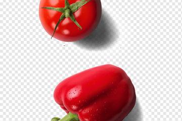 domates biberi, kırmızı dolmalık biber