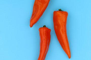 paprika, paprica, kırmızı biber (2)