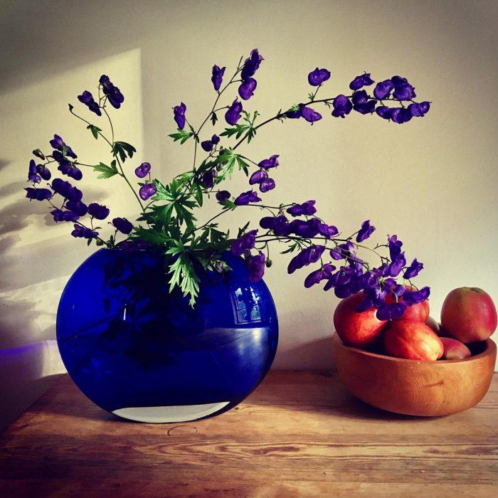çiçek, vazo, meyve, Lavandula angustifolia, lavanta, birki, mor, çiçek, yeşil