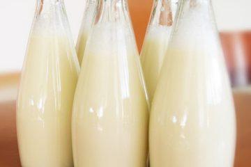 bezelye sütü