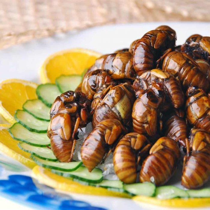 alternatif et, böcek yemeği, limon, salatalık, haşerat, kızarmış eklembacaklı