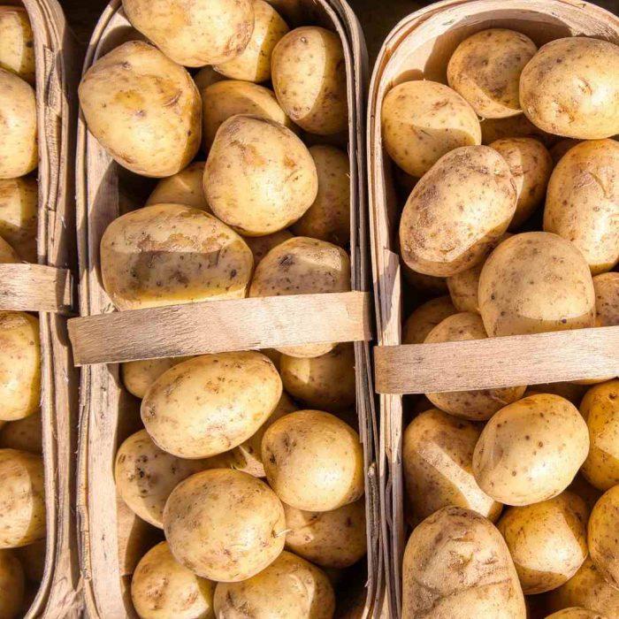 çiğ patates, potato, pişmemiş