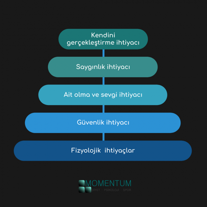maslow, ihtiyaçlar hiyerarşisi, gereksinimler hiyerarşisi, motivasyon, ihtiyaçlar piramidi, piramit, basamak