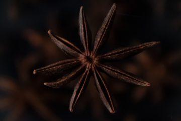 yıldız anason, baharat, fitoterapi, anisol