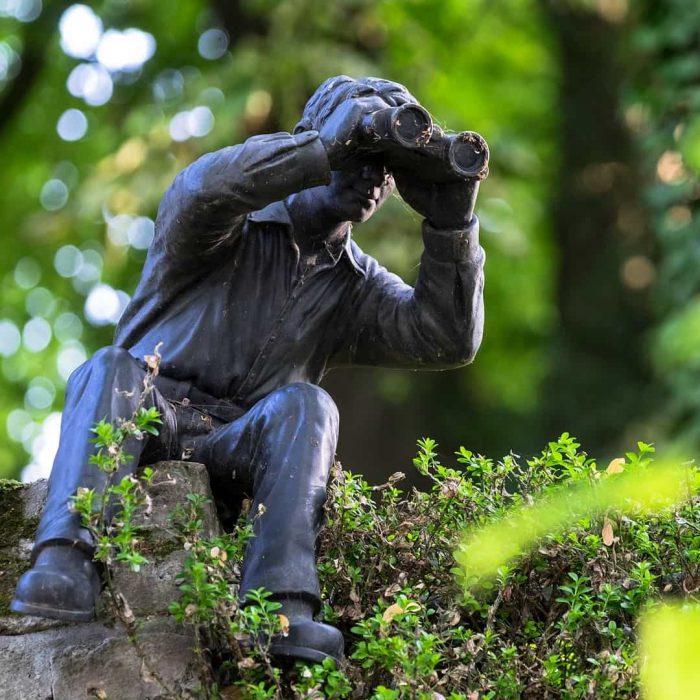 stalking, stalker, şiddet, flört şiddeti, gözlem, gözlemek, dürbün, izlemek