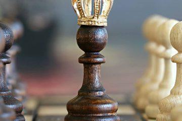 zeka, zeki, satranç, düşünme, oyun,