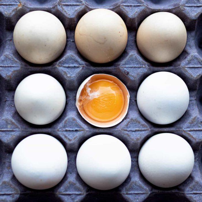 beyaz yumurta, yumurta sarısı, viyol yumurta, yumurta kartonu