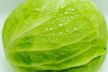 lahana, kelem, haç yapraklı sebzeler