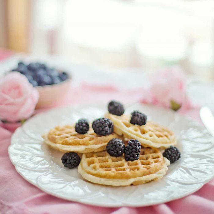 siyah meyveler, antioksidan, karamut, berry, beriler, meyve, dut, hamur işi, hamurişi, tatlı, şekerli, pan kek, pankek, waffle, vafıl