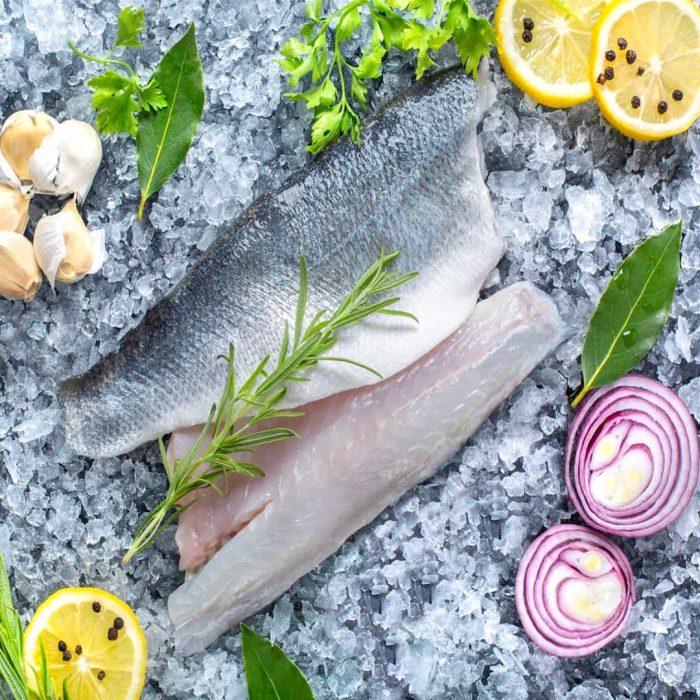 levrek balığı