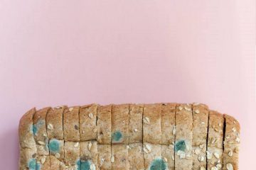 Ekmek, küflü ekmek, küflenmiş ekmek, bayat ekmek