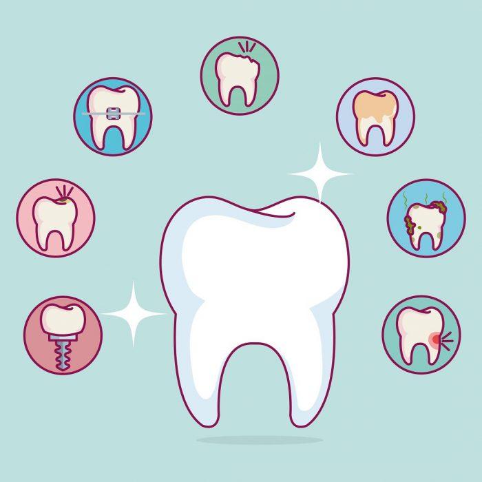 diş sağlığı, diş bakımı, diş hijyeni