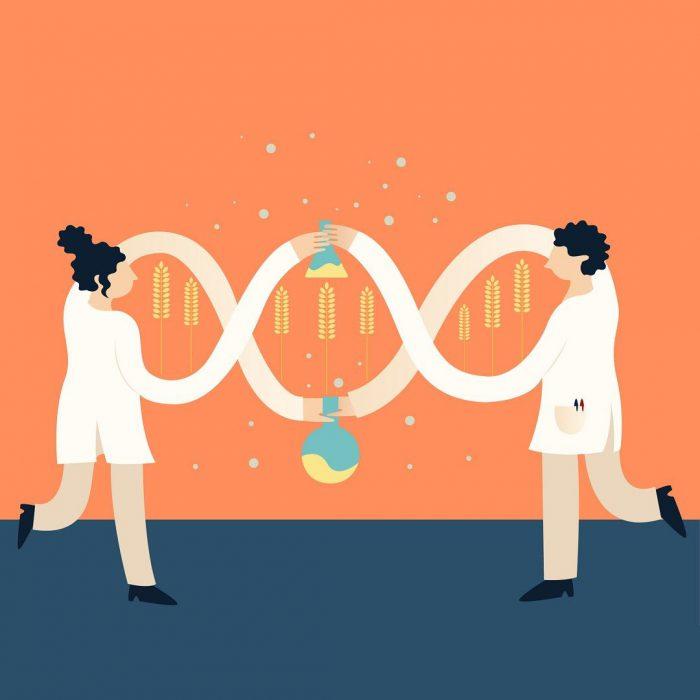 gdo, genetiği değiştirilmiş organizma, gmo, biyomühendislik, laboratuvar, gen